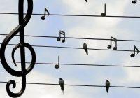 Enjoy Pub Chorus at the Delatite Hotel in Mansfield